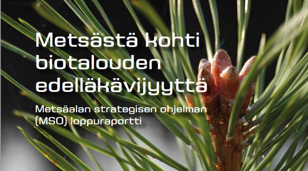 Teksti metsästä kohti biotalouden edelläkävijyyttä. Metsäalan strategisen ohjelman loppuraportti.