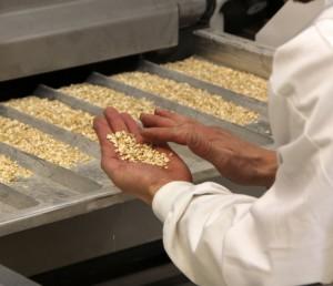Työntekijä käsittelee kaurahiutaleita tehtaalla.