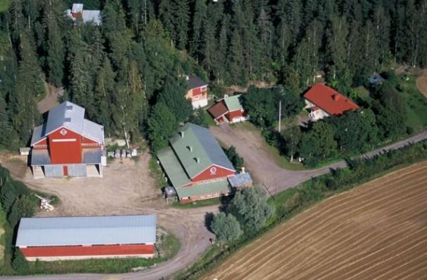 Kuva: Petteri Patolinna