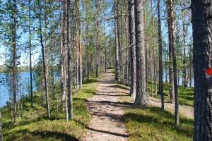 Hossa 1. Kuva Sirke Seppänen, Metsahallitus