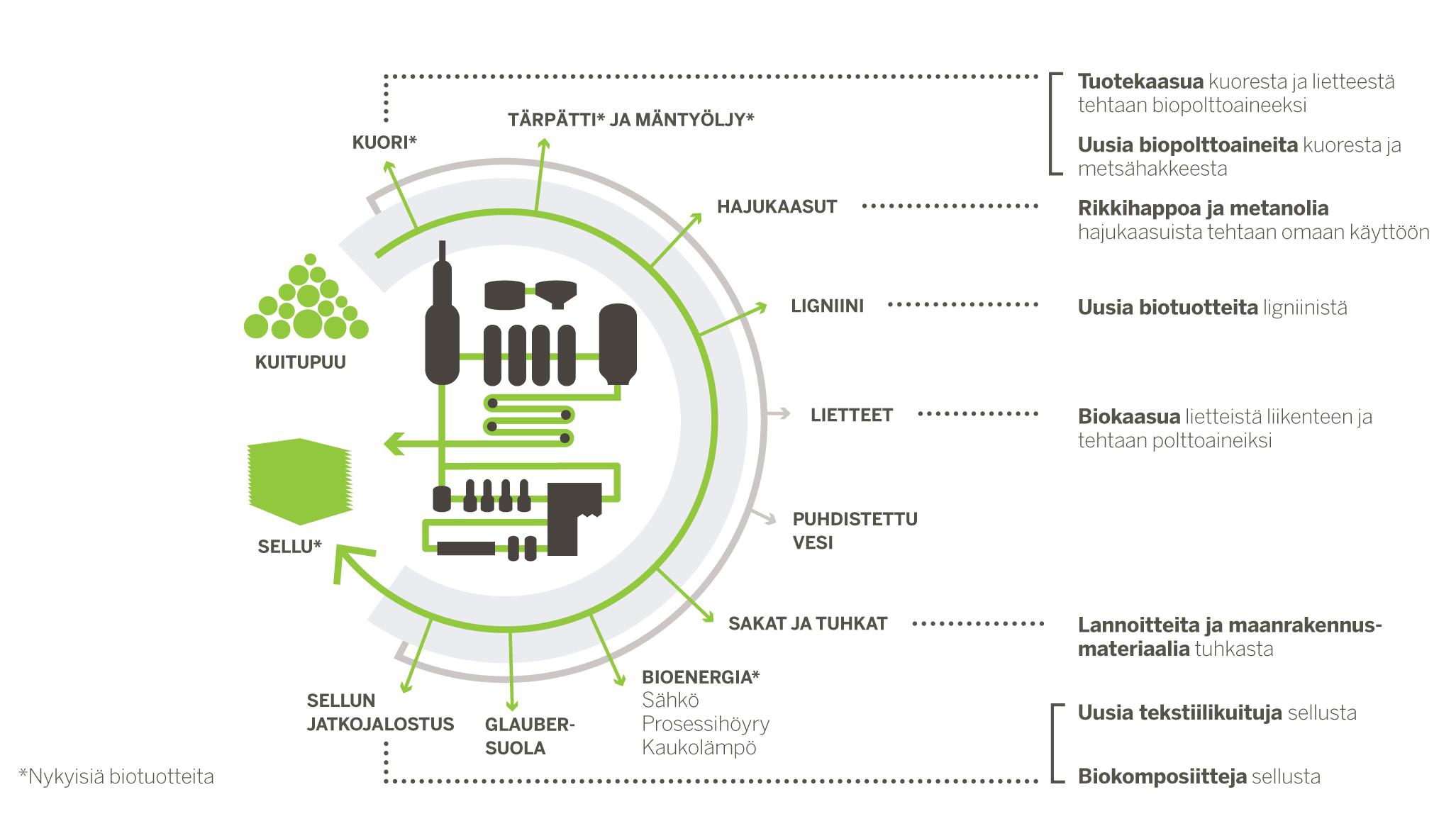 Biokaasun Valmistus