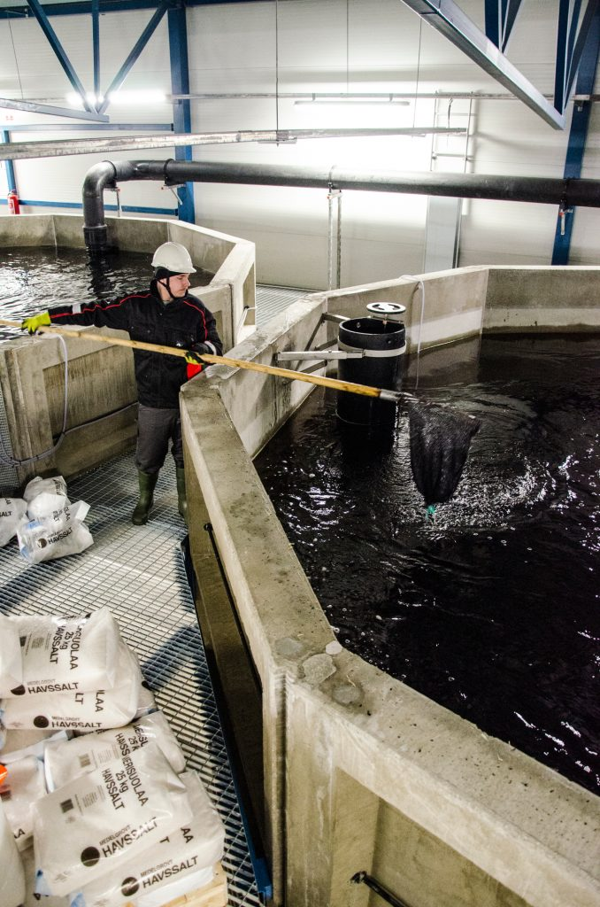 Fish farm worker next to a tank with a net.