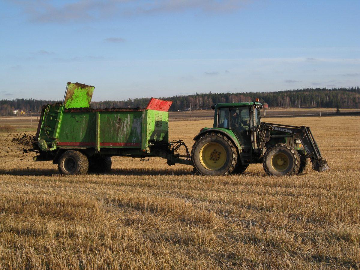 Traktori pellolla levittämässä lantaa.