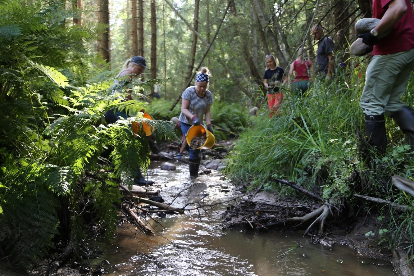 Talkoolaiset vesienhoitotyössä purolla.