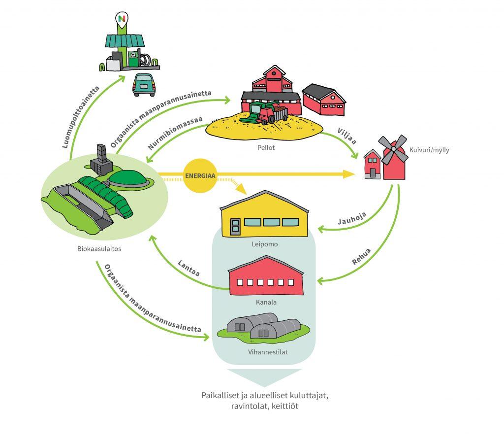 Agroekologisen symbioosin kaavakuva, jossa raaka-aineita ja energiaa liikkuu peltojen, myllyjen, kanaloiden, leipomojen, vihannestilojen ja biokaasulaitosten välillä.