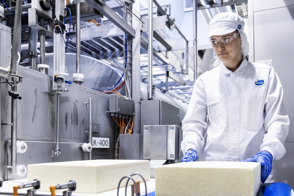 Valion tehtaan työntekijä käsittelee juustoa.