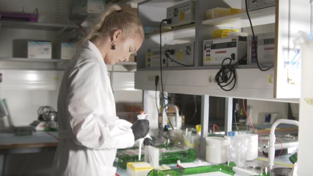 Vaaleahiuksinen nainen valkoisessa labratakissa työskentelemässä laboratoriossa.